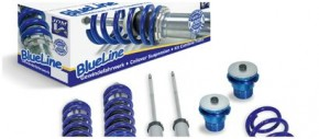 BlueLine & Strut Bearings Kit